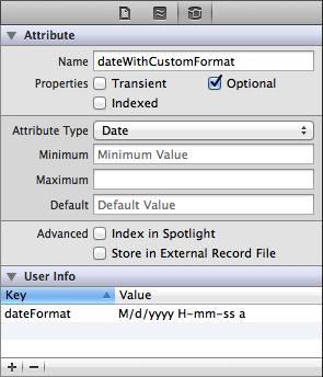 Xcoode - Date attribute configured with a custom date format